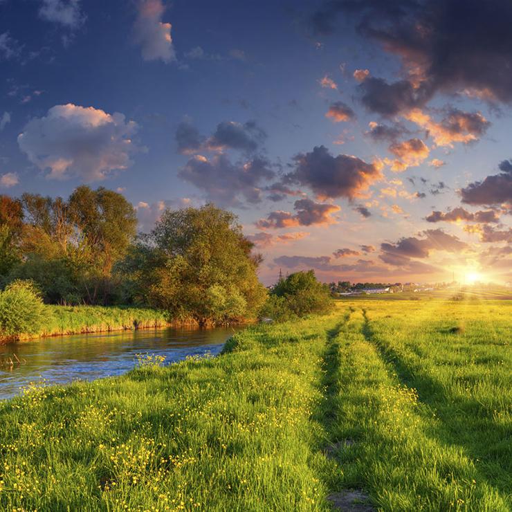 The Creation Praises the Creator